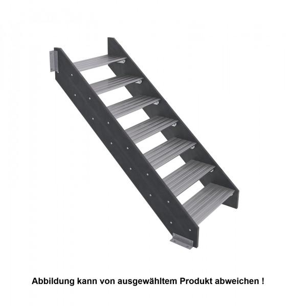 Wangentreppe AW1 mit Kunststoffwange